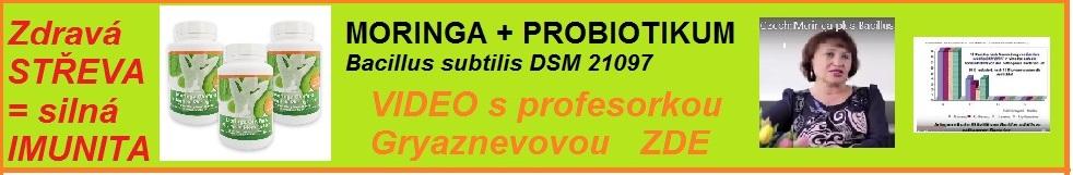 Moringa plus PROBIOTIKUM Bacillus subtilis DSM 21097