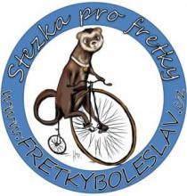 Logo fretky boleslav