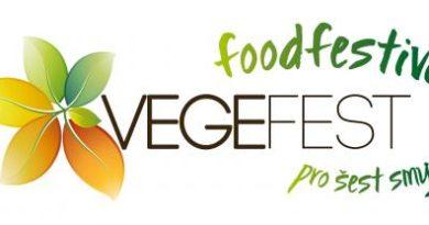 VEGEFEST - food festival pro šest smyslů